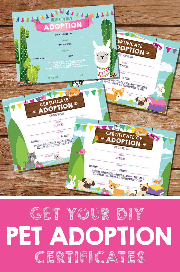 Make It Official With Pet Adoption Certificates Sunshine
